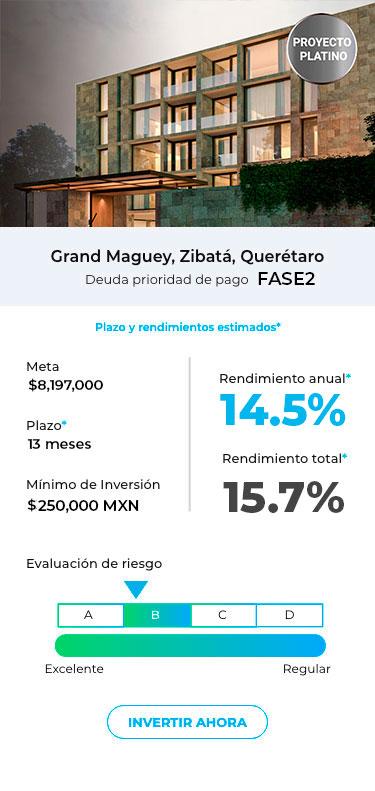 Ficha-proyecto-zibata-PLATINO